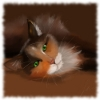 Пазл: Умный кот (Jigsaw: Clever cat)