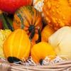 Пазл: Урожай (Jigsaw: Fall Harvest)
