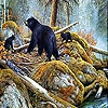 Пазл: Медведи на озере (Bears in the lake slide puzzle)