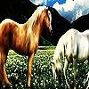 Поиск чисел: Фантастические лошади (Fantastic horses hidden numbers)