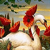 Пятнашки: Лебедь (Swan and flowers slide puzzle)