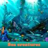 Поиск предметов: Морские существа (Sea creatures. Find objects)