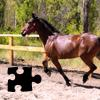 Пазл: Лошади 3 (Horse Jigsaw Puzzles)