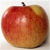 Пазлы: Яблоки (Big Apple Jigsaw)