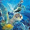 Пятнашки: Морские черепахи (Turtles  in the ocean slide puzzle)