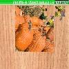 Пазл: Фрукты и овощи 16 (Fruits and vegetables 16)