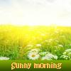 Пять отличий: Солнечное утро (Sunny morning)