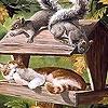 Пазл: Сонный котик (Sleepy cat and friends puzzle)