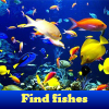 Поиск предметов: Рыбки (Find fishes. Find objects)