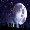 Пазл: Луна (Moon Jigsaw)