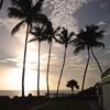 Пазл: Закат в тропиках (Jigsaw: Tropical Sunrise)