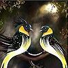 Пятнашки: Птички (Sweet budgerigars slide puzzle)
