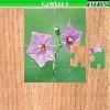 Пазл:  Цветы 8 (Flowers 8)