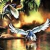 Пятнашки: Птичка в полете (Flying birds slide puzzle)