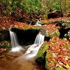 Пазл: Великолепная природа (Great Of Nature)