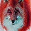 Пятнашки: Лисица (Red forest fox slide puzzle)