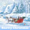Поиск предметов: Заснеженное Рождество (Snowy Christmas)