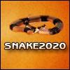 Змейка (SNAKE 20-20)