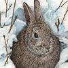 Пазл: Кролик в снегу (Snow Rabbit Puzzle)