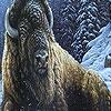 Пазл: Зима и большой буйвол (Winter and  big buffalo puzzle)