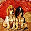 Пятнашки: Собачки (Red umbrella dogs slide puzzle)