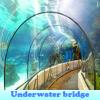 Поиск предметов: Подводный мост (Underwater bridge)