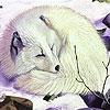 Пазл: Снежная лиса (Sleepy white fox puzzle)
