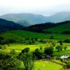 Поиск чисел: Зеленая долина (Green Valley find numbers)