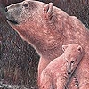 Пазл: Полярные медведи (Red polar bears puzzle)