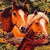 Пятнашки: Лошадиная ферма (Grand farm horses slide puzzle)
