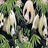 Пятнашки: Панды (Sweetie pandas slide puzzle)