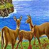 Пятнашки: Газели (Beautiful gazelles slide puzzle)