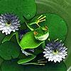 Пятнашки: Лягушка (Snoopy frog slide puzzle)