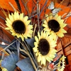 Пазл: Букет подсолнечников (Jigsaw: Sunflower Bouquet)