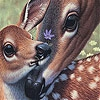 Пятнашки: Олени (Deers and lovely day slide puzzle)