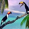 Пятнашки: Две птицы (Two toucan in the sea slide puzzle)