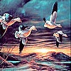 Пятнашки: Ночной полет (Flying birds at night slide puzzle)