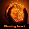 Пять отличий: Пламенное сердце (Flaming heart)