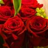 Пазл: Красные розы (Jigsaw: Red Love)