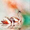 Пятнашки: Лебеди (Golden swans slide puzzle)