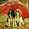 Пятнашки: Красный зонтик (Red umbrella and dogs slide puzzle)