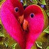 Пятнашки: Две птички (Two lovebirds slide puzzle)