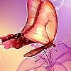 Поиск предметов: Удивительные бабочки (Fantastic butterflies hidden numbers)