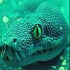 Пятнашки: Сердитая змея (Angry green snake slide puzzle)