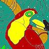 Раскраска: Большой клюв (Big nose on the tree coloring)