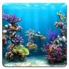 Поиск предметов: Подводный город (Underwater city)
