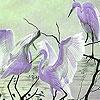 Пятнашки: Птицы и закат (Birds at sunset slide puzzle)