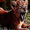 Пятнашки: Тигр (Crazy tiger slide puzzle)