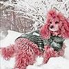 Пятнашки: Розовая собачка (Snow and pink dog slide puzzle)