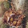 Пазл: Полевая мышь (Field mouse's puzzle)